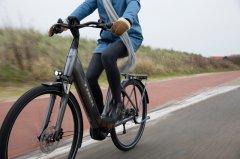 E-Trekking-/Citybikes